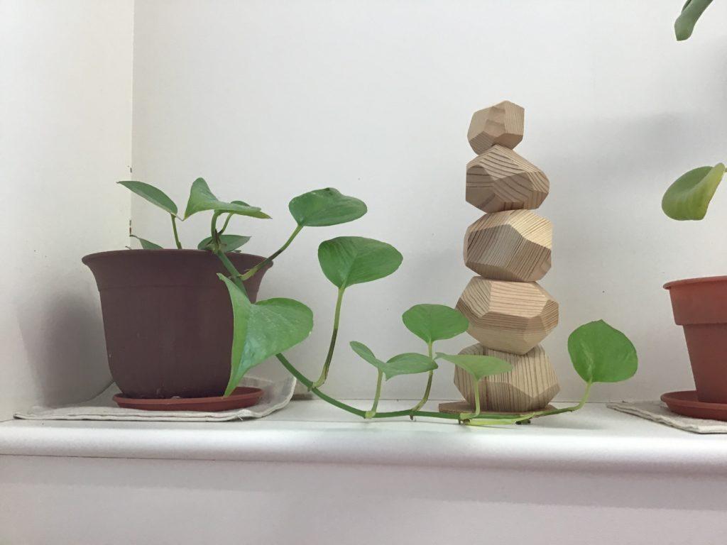 観葉植物 《ポトスさん》